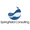 SPRINGFIELD CONSULTING